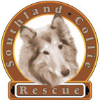 Southland Collie Rescue